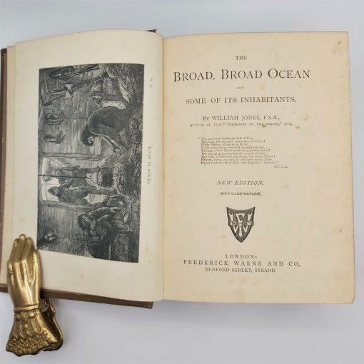 Broad Broad Ocean - Vintage Book Cover (1)