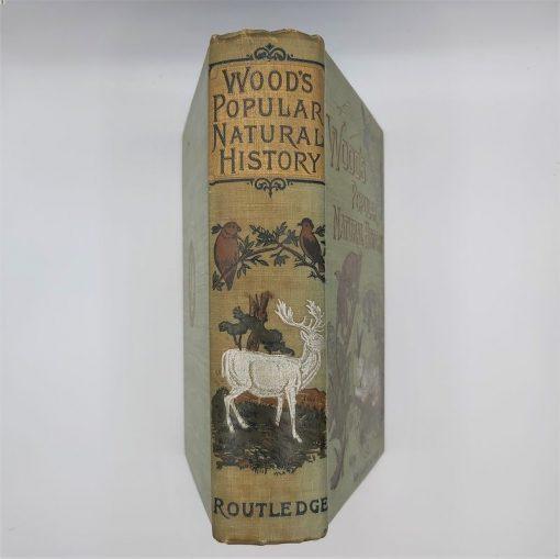 Woods Popular Natural History (1)